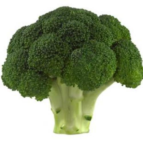 Broccoli Food