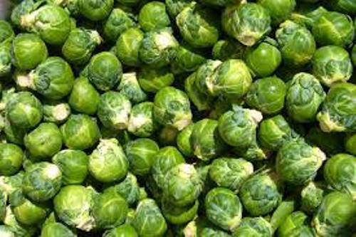 Brussels Sprouts Facts