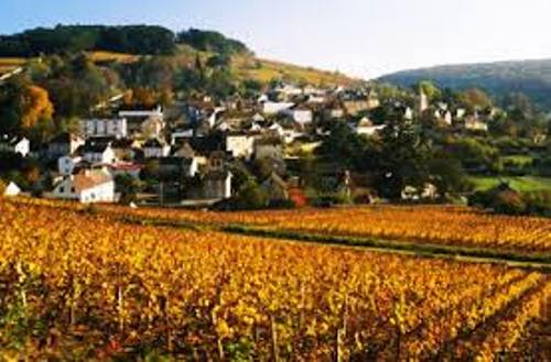Facts about Burgundy France