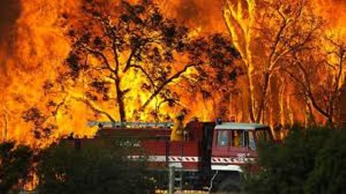 Facts about Bushfires