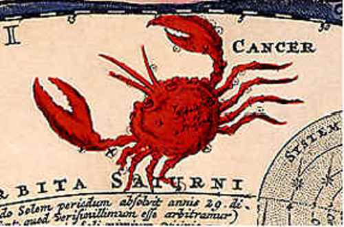 Cancer the Crab Pic