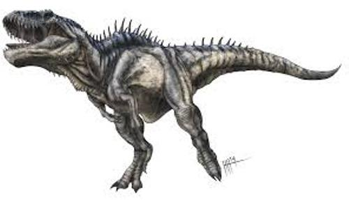 Facts about Carcharodontosaurus