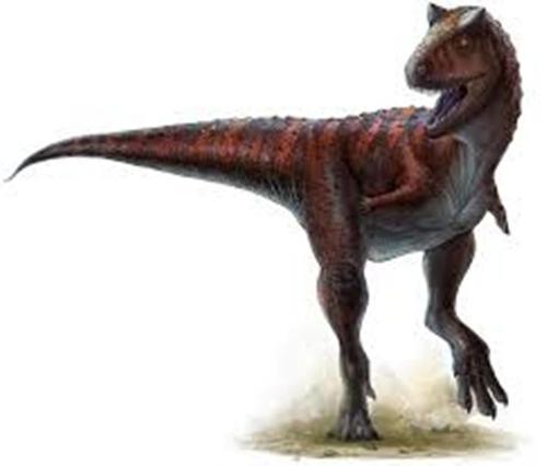 Carnotaurus Pic