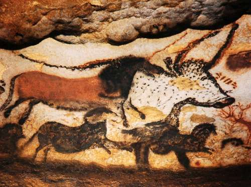 Cave Art Facts