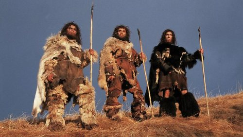 Cavemen Clothes