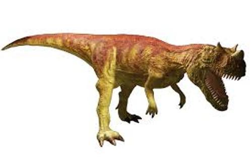 Ceratosaurus Picture