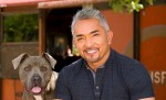 10 Facts about Cesar Millan