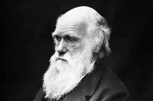Charles Darwin Picture