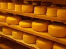 10 Facts about Cheese