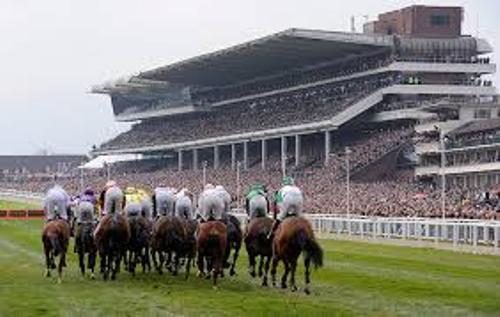 Cheltenham Horse Race