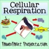 10 Facts about Cellular Respiration