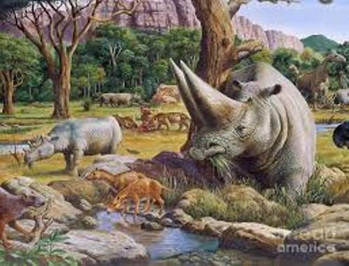 Facts about Cenozoic Era