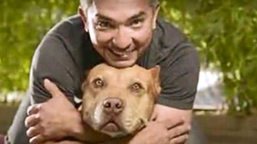 Facts about Cesar Millan
