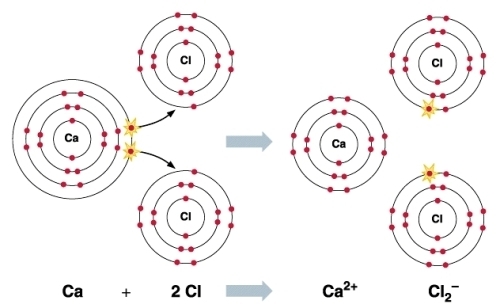 Facts about Chemical Bonding