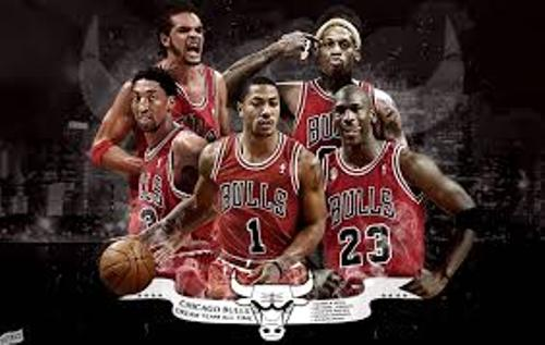 Chicago Bulls facts