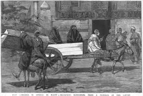 Cholera in The 19th Century facts