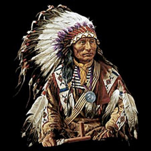 Facts about Chief Powhatan