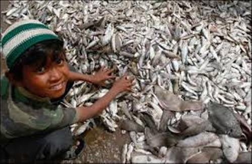 Facts about Child Labour in Pakistan