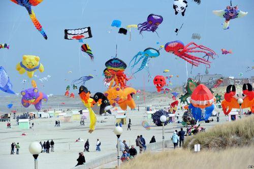 Unique Chinese Kites