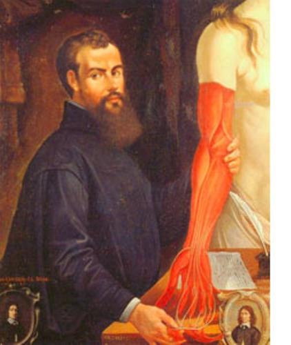 Claudius Galen Picture