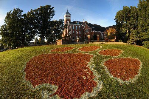 Clemson University Facts