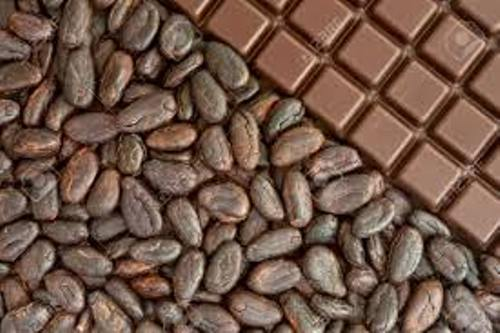 Cocoa Bean Facts
