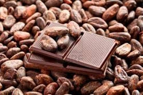 Facts about Cocoa Beans