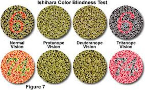 Color Blindness Pic