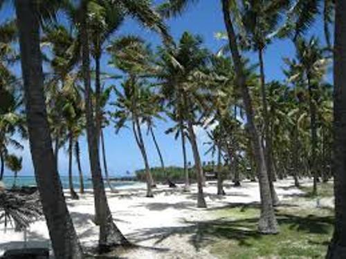 Comoros Beauty