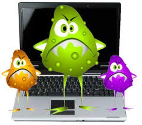 Computer Virus Facts