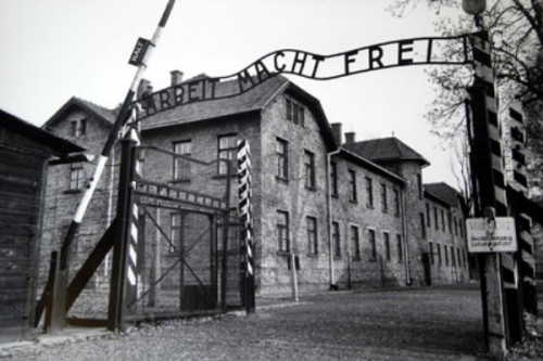 Concentration Camps Pic