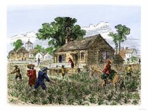 Facts about Colonial Virginia