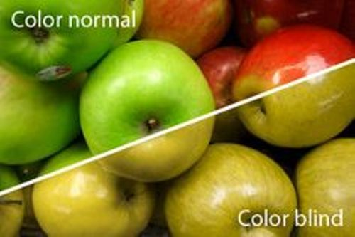 Facts about Color BlindnessFacts about Color Blindness