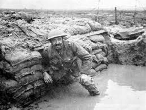 Facts about Conditions in The Trenches