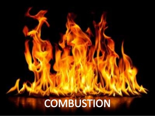 combustion facts