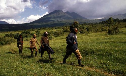 Congo Pic