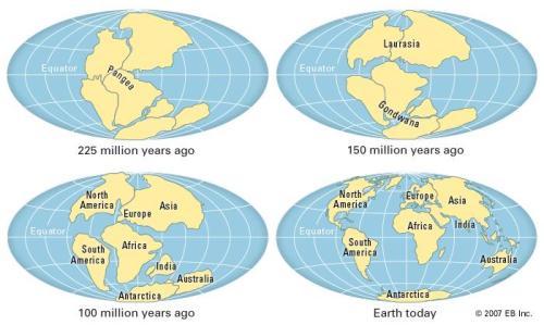 Continental Drift Facts