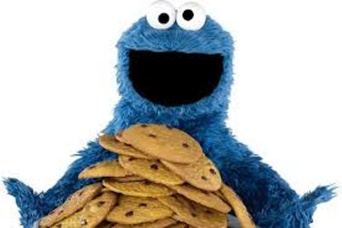 Cookie Monster Pic