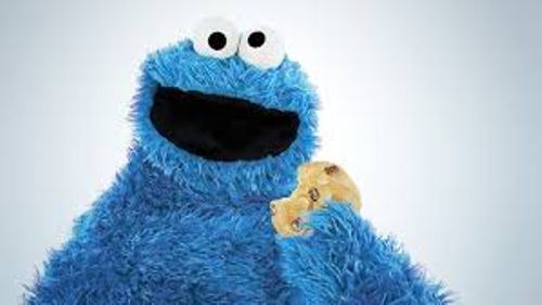 Cookie Monster facts