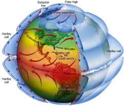 Coriolis Effect Facts