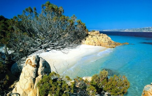 Facts about Corsica