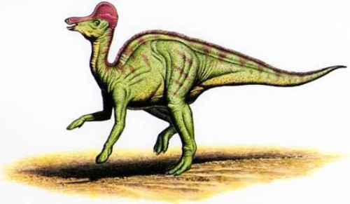 Facts about Corythosaurus