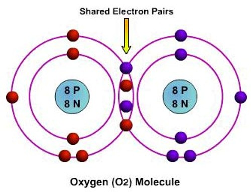 covalent bond The number of bonds that each element is able to form is usually equal to the number of unpaired electrons in order to form a covalent bond, each element has to share one unpaired electron.