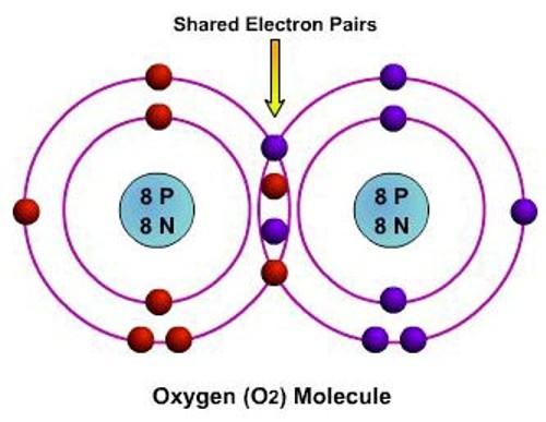 Covalent Bonds Pictures