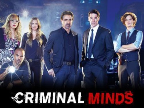 Criminal Minds Series
