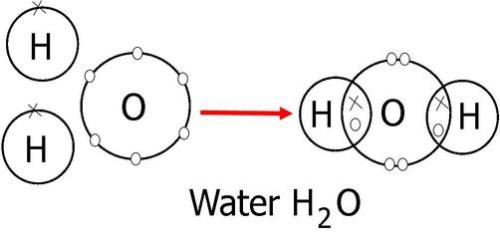 Facts about Covalent Bonds