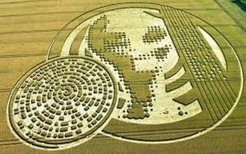 Crop Circles Images