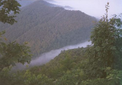 Cumberland Gap Beauty