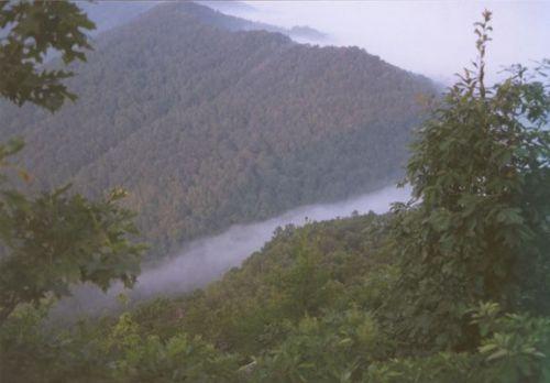 Cumberland Gap Beauty