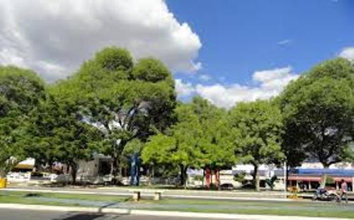 Curitiba Image